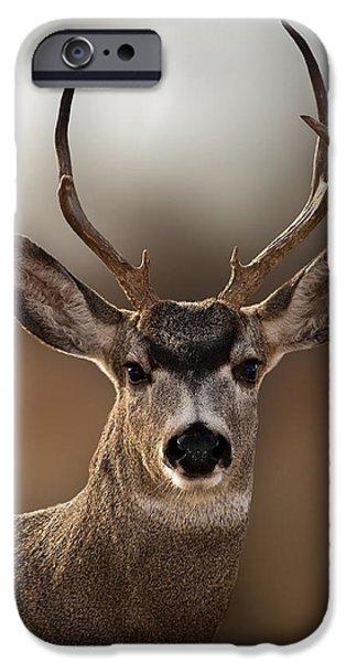 Mule Deer Buck iPhone Case by Karen Slagle