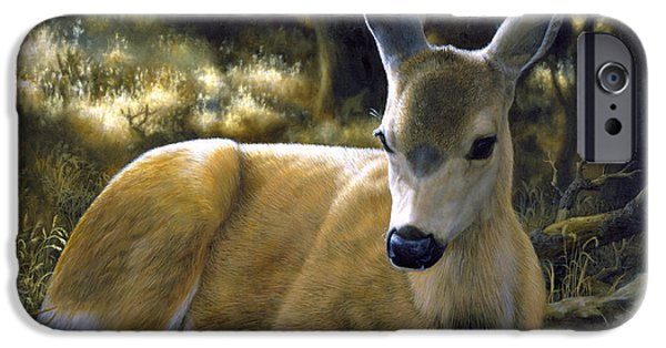 Wild Animals iPhone Cases - Mule Deer Fawn - A Quiet Place iPhone Case by Crista Forest