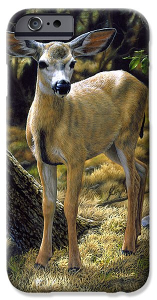 Wild Animals iPhone Cases - Mule Deer Fawn - Monarch Moment iPhone Case by Crista Forest
