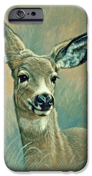 Fawn iPhone Cases - Muley Fawn at Six Months iPhone Case by Paul Krapf
