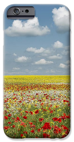 Multicoloured Field iPhone Case by Tim Gainey