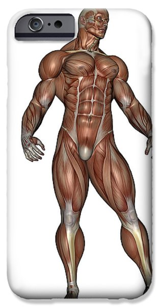 Muscular Digital iPhone Cases - Muscular Man Standing iPhone Case by Elena Duvernay