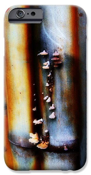Bamboo Fence iPhone Cases - Mushroom on Bamboo 2 iPhone Case by Lyle Barker