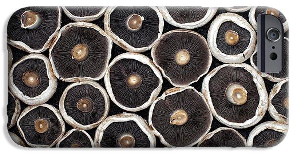 Mushroom iPhone Cases - Mushrooms iPhone Case by Tim Gainey
