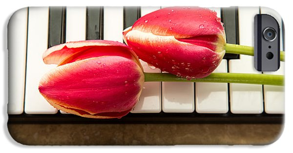 Florals iPhone Cases - Musical Interlude iPhone Case by Edward Fielding