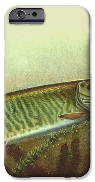 Muskie and Spinner Bait iPhone Case by Jon Q Wright