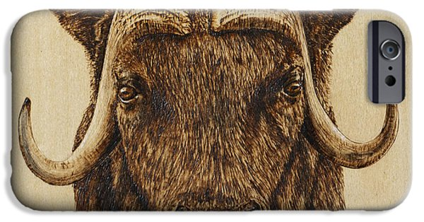 Power Pyrography iPhone Cases - Muskox iPhone Case by Ron Haist