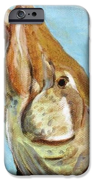 Musky Paintings iPhone Cases - Musky iPhone Case by Gina  Boyd-Mullins
