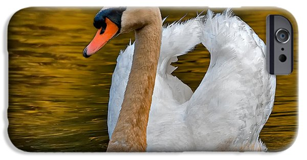 Swan iPhone Cases - Mute Swan iPhone Case by Susan Candelario