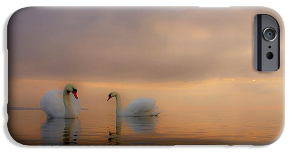 Fog Mist iPhone Cases - Mute Swans iPhone Case by Peter Samuelsson
