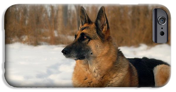 Dog In Landscape iPhone Cases - My Beautiful Girl iPhone Case by Michele Thielke