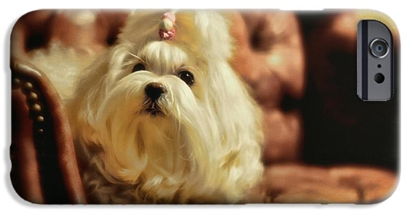 Maltese Puppy iPhone Cases - MY Chair iPhone Case by Lois Bryan