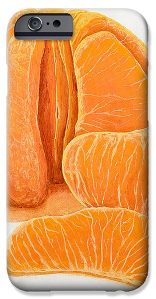 My Clementine iPhone Case by Garry McMichael