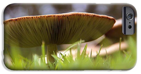 Mushrooms iPhone Cases - My Mushroom Neighbor  iPhone Case by Mike McGlothlen