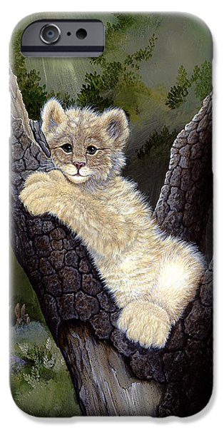 Bobcat Kittens iPhone Cases - My Silly Playground iPhone Case by Russell Bentley
