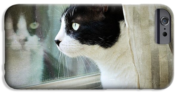 Cat Reflection iPhone Cases - My View iPhone Case by Fraida Gutovich