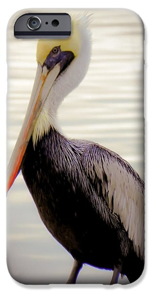 MY VISITOR iPhone Case by KAREN WILES