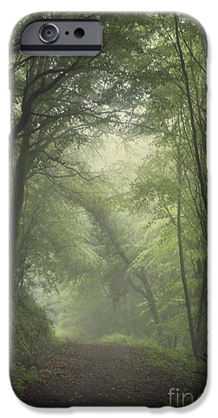 Eerie Photographs iPhone Cases - Mystery Awakens iPhone Case by Evelina Kremsdorf