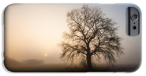 Fog Mist iPhone Cases - Mystic morning iPhone Case by Davorin Mance