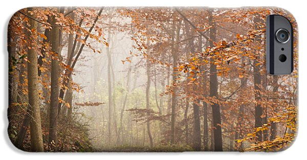 United iPhone Cases - Mystic Woods iPhone Case by Anne Gilbert