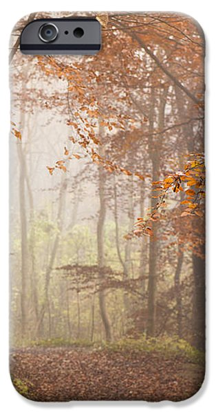 Mystic Woods iPhone Case by Anne Gilbert