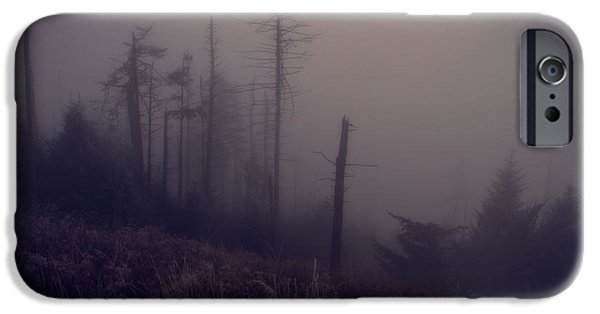 Wildfire iPhone Cases - Mystical Morning Fog iPhone Case by Dan Sproul