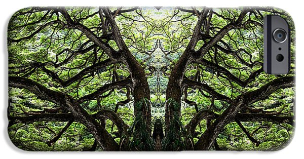 Mystifying iPhone Cases - Mystify iPhone Case by Cheryl Young