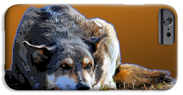 Dogs Digital Art iPhone Cases - Nap In The Sunshine iPhone Case by Renee Forth-Fukumoto