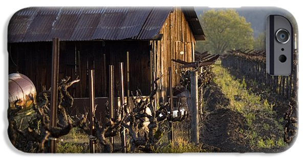 Crops iPhone Cases - Napa Morning iPhone Case by Bill Gallagher
