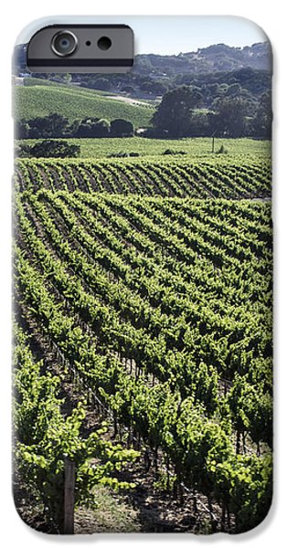 Napa Valley Vineyard iPhone Case by Dee  Savage