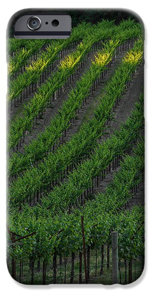 Napa Photographs iPhone Cases - Napa Valley Vineyard iPhone Case by Steve Gadomski