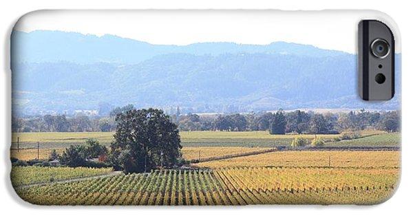 Vineyard In Napa iPhone Cases - Napa Valley Vista iPhone Case by Penelope Moore
