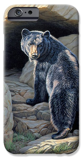 Black Bear iPhone Cases - Napping Place iPhone Case by Paul Krapf