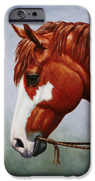 Paint Horse iPhone Cases - Native American Pinto Horse iPhone Case by Crista Forest
