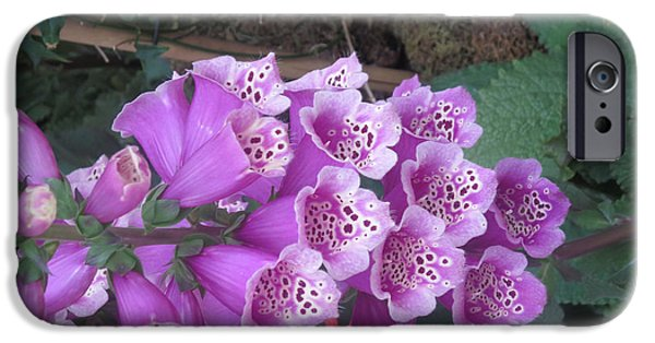 Religious iPhone Cases - Natural Bouquet Bunch of Spiritul Purple Flowers iPhone Case by Navin Joshi