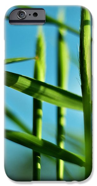 Green Surreal Geometric iPhone Cases - Natural Order iPhone Case by Rebecca Sherman