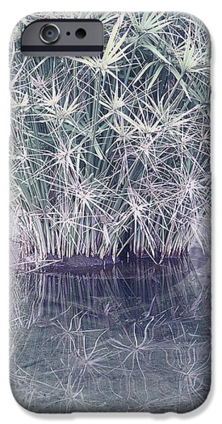 Papyrus iPhone Cases - Natural Reflections iPhone Case by Ben and Raisa Gertsberg