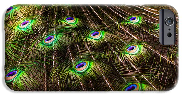 Art Forms Of Nature iPhone Cases - Nature Abstracts iPhone Case by Karen Wiles