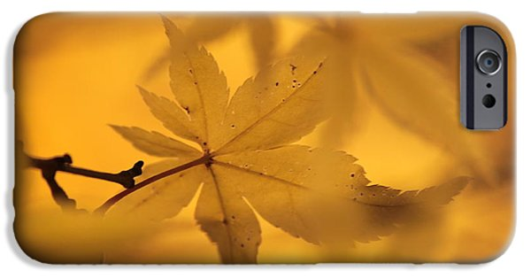 Lumiere iPhone Cases - Nature-or iPhone Case by Deniilaire Vinet