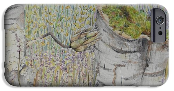 Nature Study Drawings iPhone Cases - Nature Study Italy iPhone Case by Diana J Jones