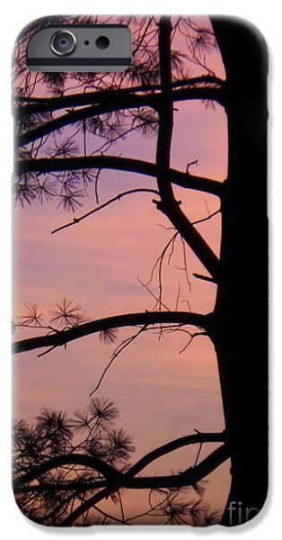 Morning iPhone Cases - Nature Sunrise iPhone Case by Charlie Cliques