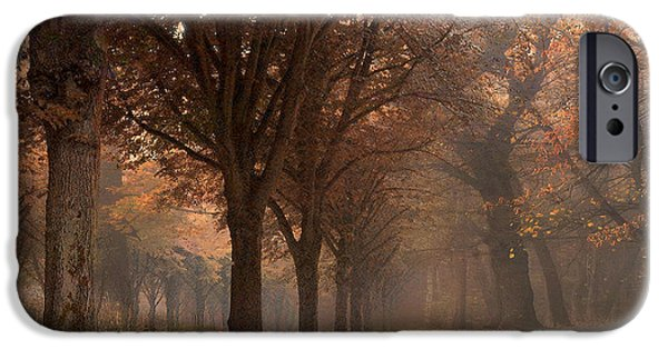Surreal Landscape iPhone Cases - Nature Woodlands Autumn Fall Landscape Trees iPhone Case by Kathy Fornal