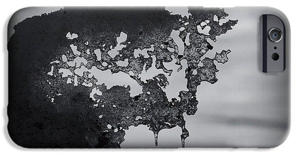 Snow Melt iPhone Cases - Natures Artwork iPhone Case by Ernie Echols