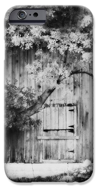 Natures Awning BW iPhone Case by Julie Hamilton