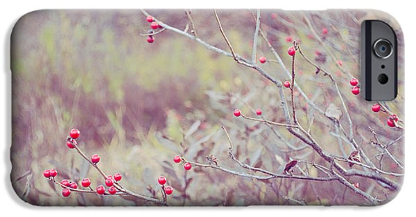 Berry iPhone Cases - Natures Bounty iPhone Case by Tiffany Rantanen