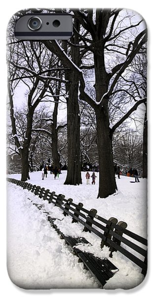 Snow Scene iPhone Cases - Natures Canvas on a Wintry Day iPhone Case by Madeline Ellis