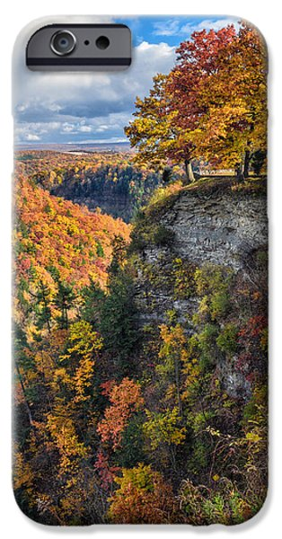Nature Scene iPhone Cases - Natures Colors iPhone Case by Mark Papke