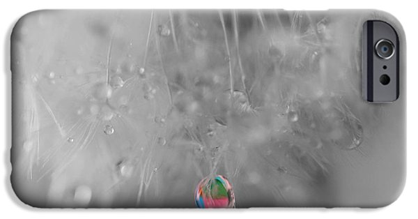 Selective Coloring Art iPhone Cases - Natures Crystal Ball iPhone Case by Marianna Mills