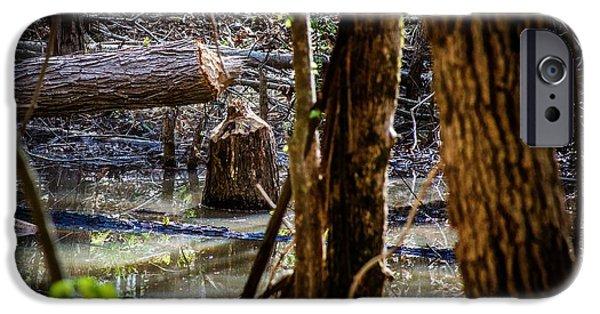 Beaver Digital iPhone Cases - Beaver - Natures Lumberjack iPhone Case by Barry Jones