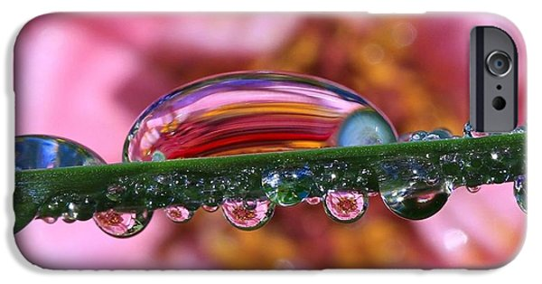 Refracted Light iPhone Cases - Natures Ornaments iPhone Case by Gary Yost